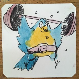 Road to Sasuke @Macaw45