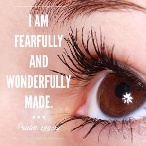 psalm-139-14-500sq