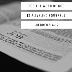 heb-4-12-bible-500sq