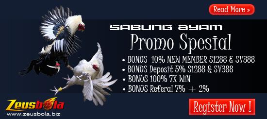 Bonus Sabung Ayam Online