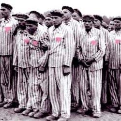酷新聞:證據顯示德國於納粹後 繼續對同性戀施行閹割手術