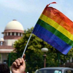 酷新闻:印度最高法院 解禁同性性行为 同志喜极而泣