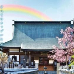 酷新闻:日本知名寺庙承办 同志婚礼  网友羡慕