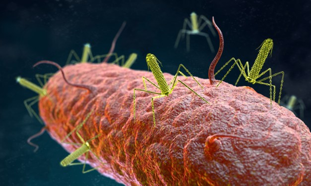 The Incredible Bacterial 'Homing Missiles' That Scientists Want to Harness