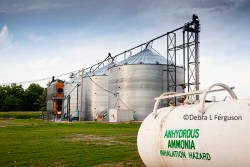 fertilizer prices – AgFax