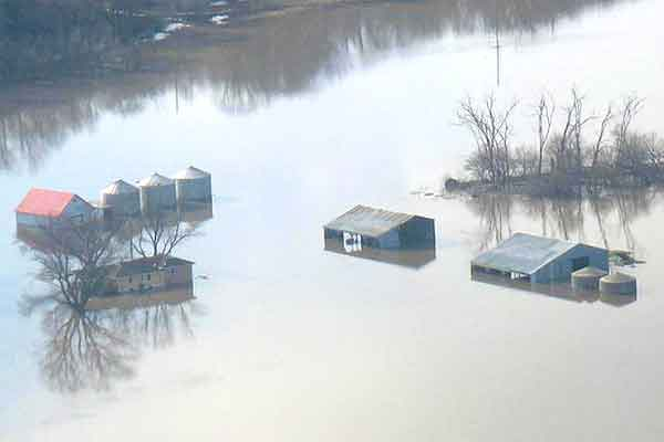 Nebraska: Flood-Soaked Grains, Forages – Dispose Quickly – 4