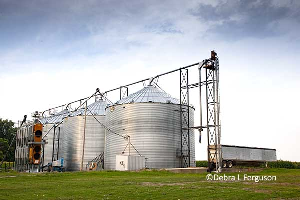 Grain Bin Safety: 11 Steps to Avoid Accidents – AgFax