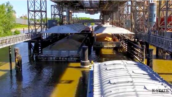 Moving Grain: Flooding Continues to Disrupt Barge and Rail