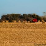 """5 """"Big Picture"""" Facts from the 2012 Ag Census"""