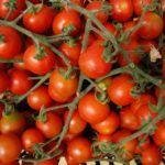 USDA agreement opens up busy Swiss organic market to US growers
