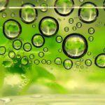 Biomaterials company, NexSteppe raises $22M Series C