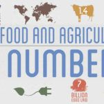 Our Food & Ag in Numbers