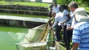 Carana Agribusiness Guyana