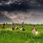 IIM Ahmedebad's CIIE & ICAR-NAARM Launch India's First Food & Agriculture Accelerator