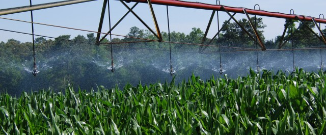 Precision Irrigation Provider Hortau Secures $5M Investment from ACAP