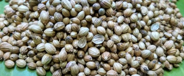 Paine & Partners Invests in Suba Seeds from $893m Fund IV