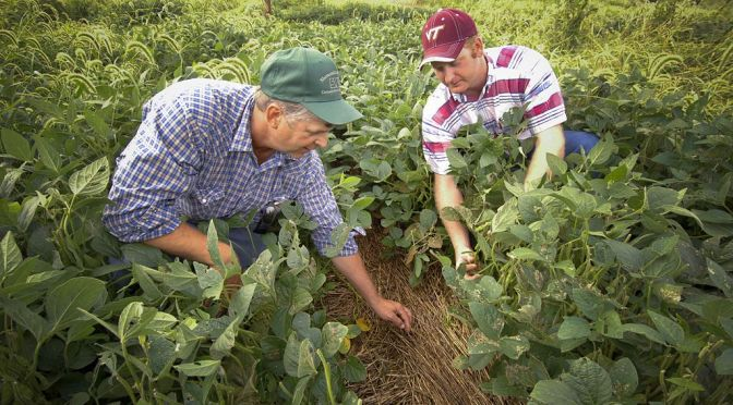 Ag Producers and Marketers Call For Industry 'Coopetition' in the Development of Agtech