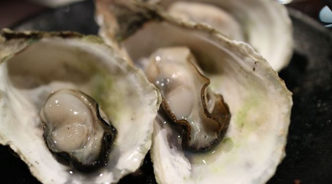 Aquaculture Sensor Startup Raises $2.5m from Bosch after Launching Oyster Product