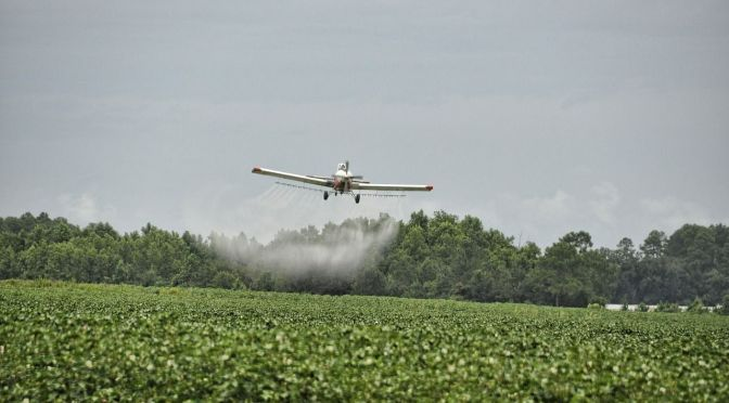 S2G Leads $10m Venture Round with Sumitomo for Biopesticide Application Technology Terramera