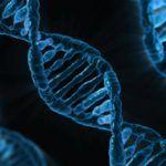 CRISPR Startup Caribou Biosciences Raises $30m Series B as Gene Editing for Ag Picks up Pace