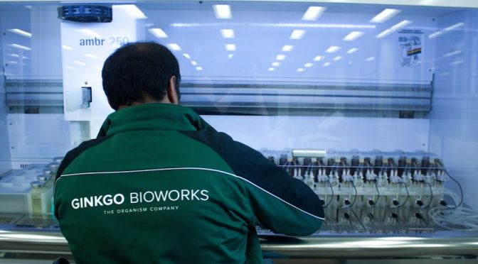 Ginkgo Bioworks Eyes Agriculture After Raising $100m for GE Microbe Manufacturing Business