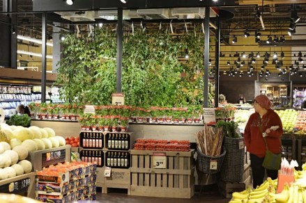 Price Chopper's hydroponic display, automated by motorleaf
