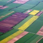 IntelinAir CEO Al Eisaian on the Future of Aerial Imagery in Agriculture