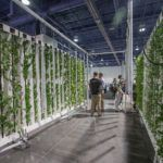 What Will 2017 Bring for Indoor Ag?
