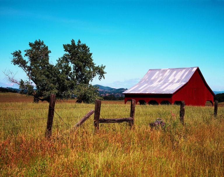 rural agtech startup
