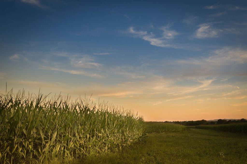 farmland debt