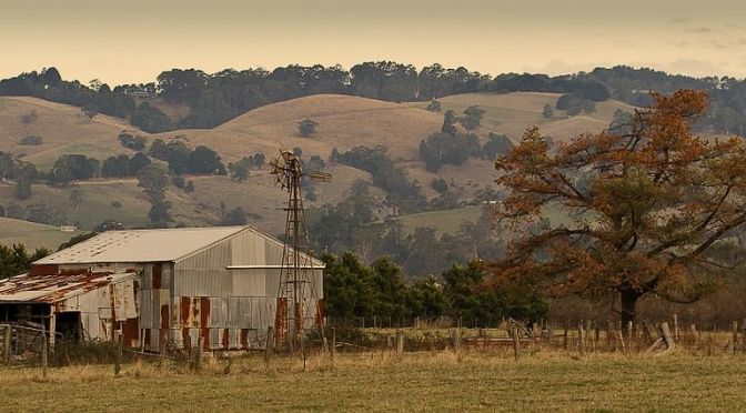 Connected Country Seeks to Digitize the Australian Farm With Local Network as Internet Struggles Continue