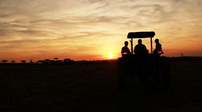 More than Robotics is Needed to Solve Farm Labor Shortage