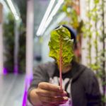 Kimbal Musk's Indoor Farmer Training Program Raises $5m Seed Funding