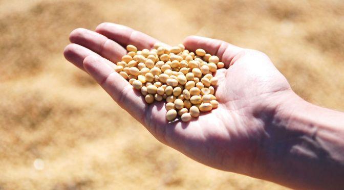 Plant Impact Raises $5m on LSE to Launch New Chemical Crop Enhancers