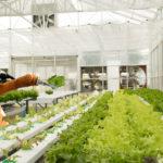 Q&A: Talking Farm Robotics With Anterra Capital's Dan Harburg
