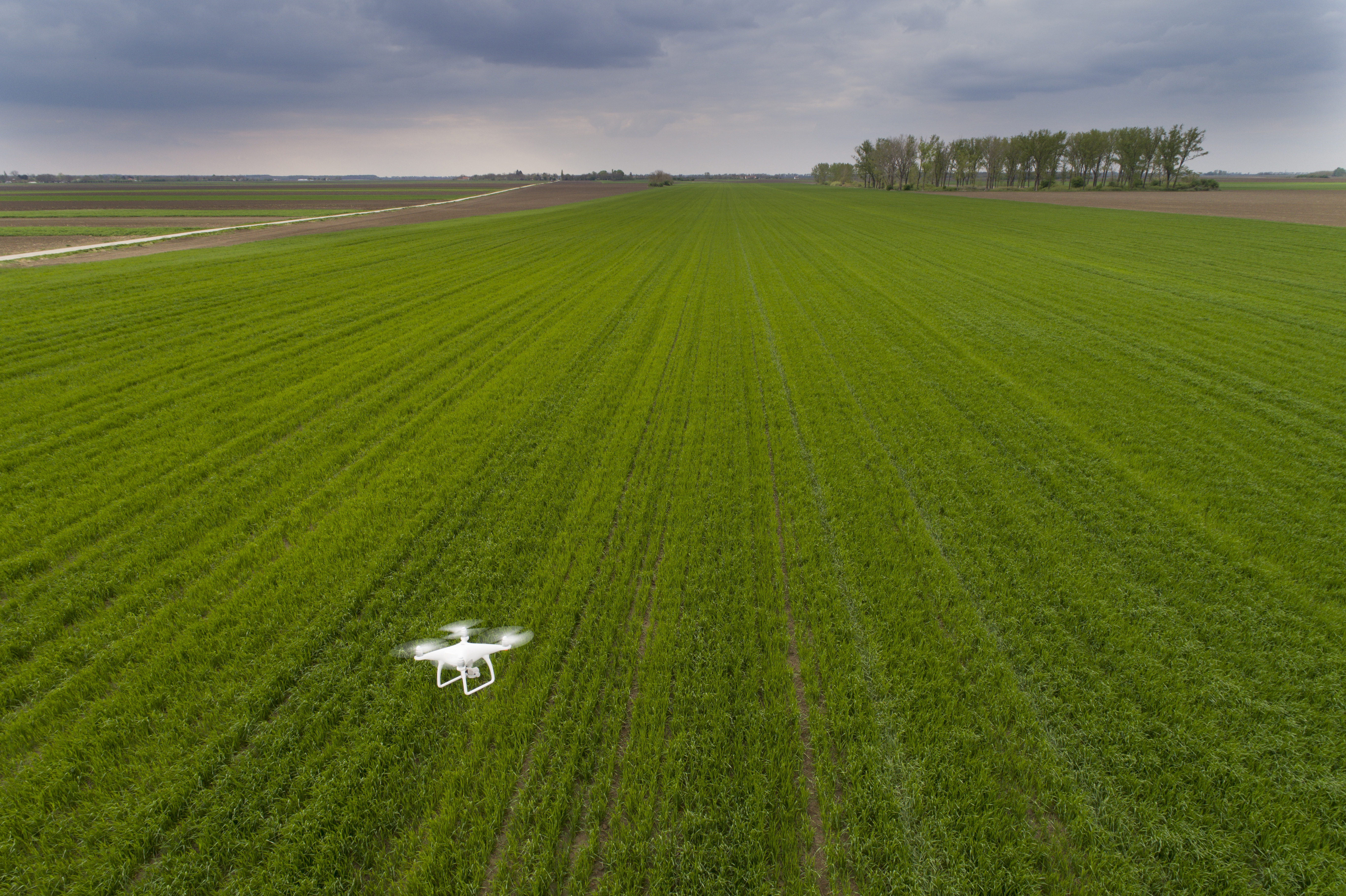 Drones: Farmers Are Looking for True Autonomy Now That the Hype is Over -  AgFunderNews