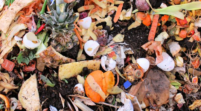 WISErg Brings Funding Total to $57m for Food Waste Tech with Series C -  AgFunderNews