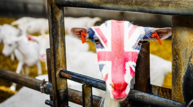UK Attempts to Mend 'Fragmented' Ag Innovation Pipeline with Research Funding