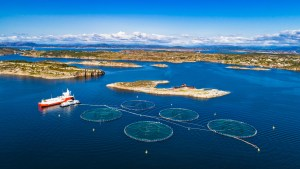 Aquaculture Startup Ecosystem