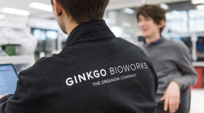 The $100m Bayer, Ginkgo Bioworks Joint Venture Has a Name, a CEO, and a Plan