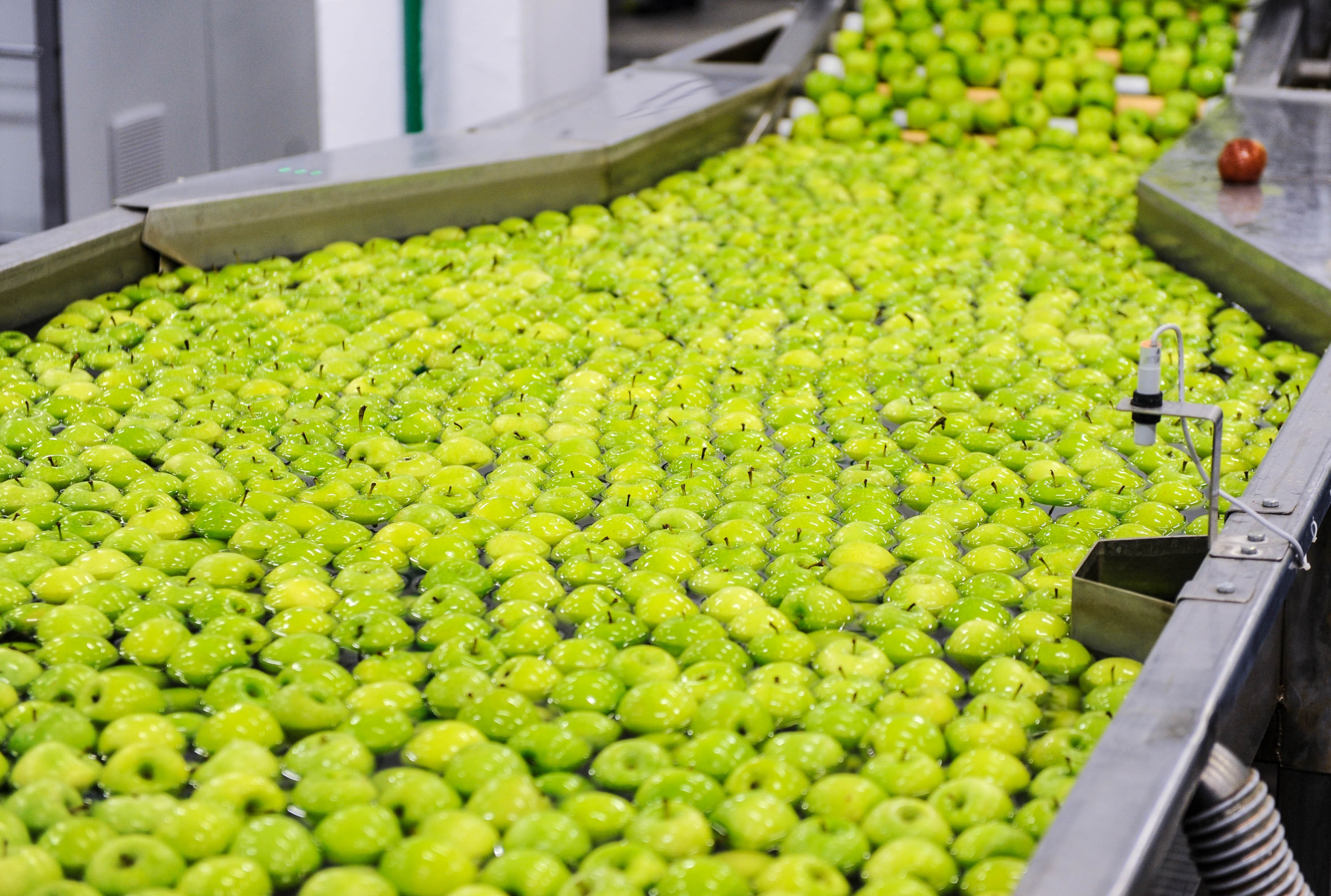 How is the Produce Supply Chain Interacting with Food Technology Startups?  - AgFunderNews