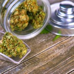 Treez Raises $11.5m Series A for Cannabis Point of Sale Software