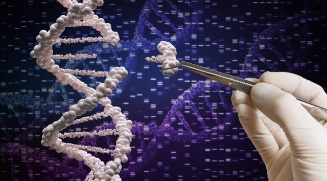 Inscripta Acquires Former Illumina Team via Solana Biosciences to Commercialize Gene Editing Tools