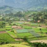 India's CropIn Raises $8m Series B to Digitize Smallholder Farms at Scale