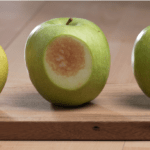 """Okanagan: There's a """"Moveable Middle"""" in Consumer Attitudes About GMO Non-Browning Apples"""
