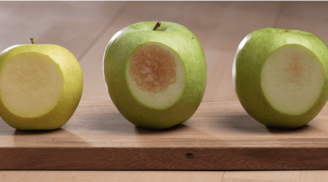 "Okanagan: There's a ""Moveable Middle"" in Consumer Attitudes About GMO Non-Browning Apples"