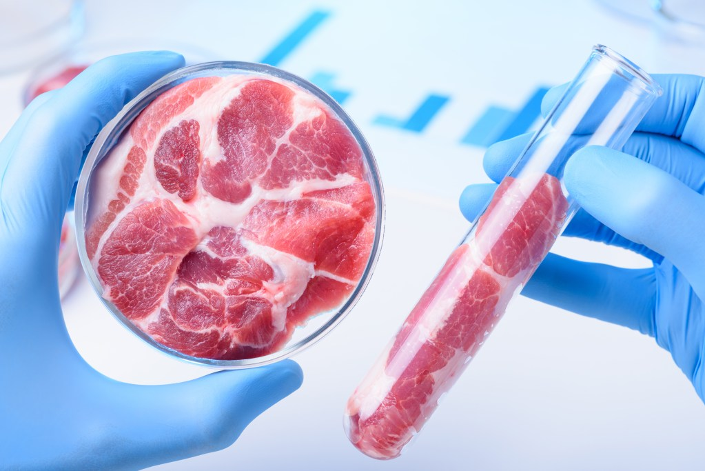 FDA and USDA Create Framework for Cell-Cultured Meat