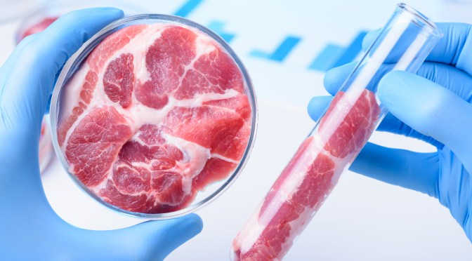 FDA and USDA Create Framework for Cell-Cultured Meat Regulation, But Labeling, Social License Still Uncertain