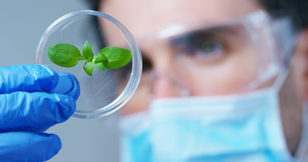 due diligence in ag biotech