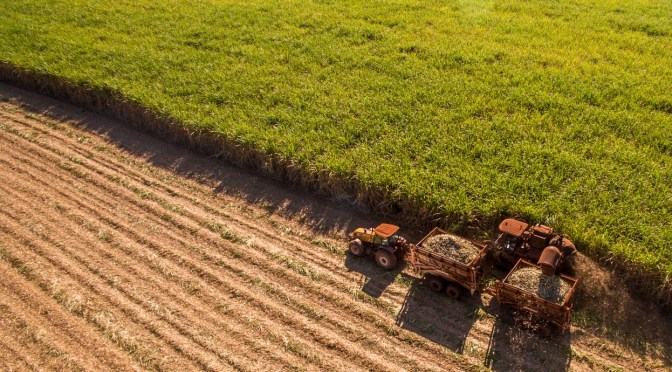 The Road to Automated Agriculture Begins in Brazil